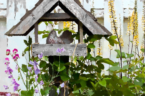 Bird In Shelter Garden Scene by Rustic Pixel