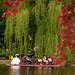 "Boston - Boston Public Gardens ""Swan Boat - Framed"""