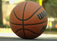 football(0.0), basketball(1.0), ball(1.0), close-up(1.0), ball(1.0),