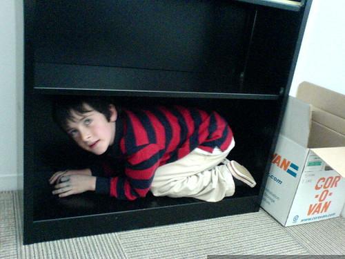flynn fits into the bottom bookshelf   DSC01122