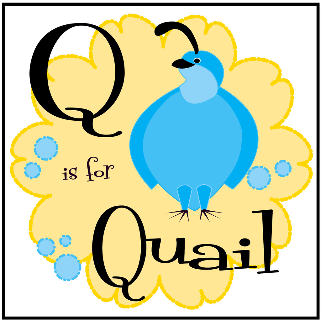 Q Is For Quail Q is for Quail | Flick...