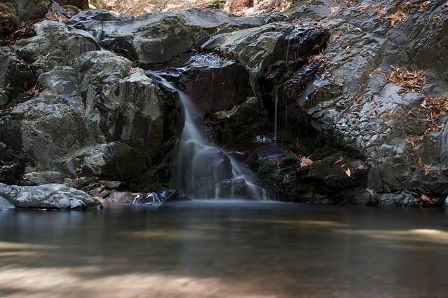 Uvas Canyon County Park | Flickr - Photo Sharing!