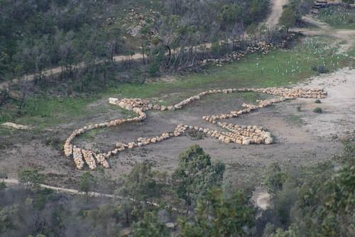 Bunjil Geoglyph: You Yangs, Victoria