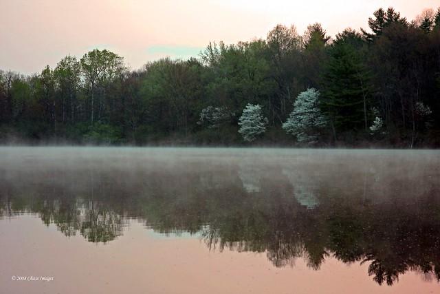 Floating Mist