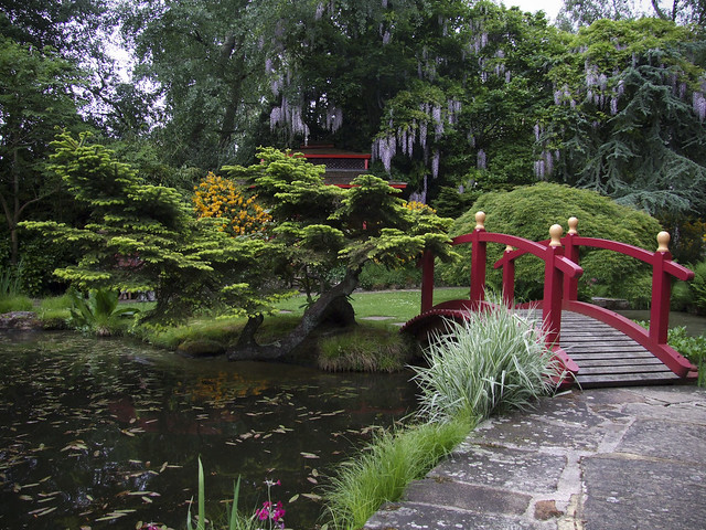 Japanese water garden flickr photo sharing - Japanese garden ...