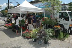 Hodgson's Farm at the Cortelyou Greenmarket