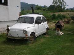 compact car(0.0), automobile(1.0), vehicle(1.0), fiat 600(1.0), subcompact car(1.0), city car(1.0), zastava 750(1.0), antique car(1.0), land vehicle(1.0), coupã©(1.0),