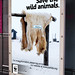 Save the wild animals - Billboard poster