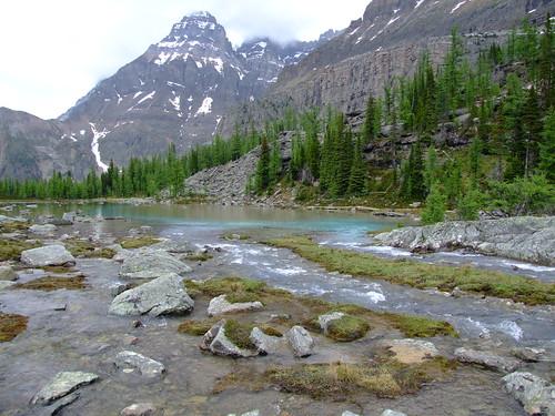 Opabin Plateau
