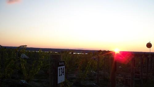 sunset winetour senecalake 3brotherswineriesestatesvineyards