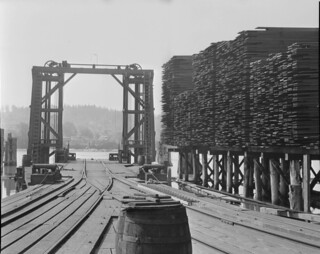 Seattle Cedar Lumber Company Mill in Ballard, 1915