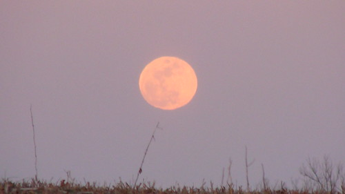pink sunset moon grass eclipse indiana