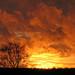 February sunset by Ingrid0804