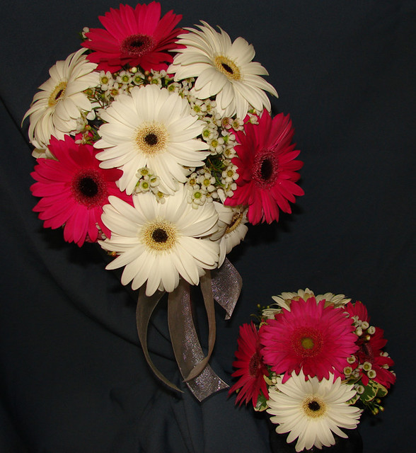Bridal Bouquet Of Gerbera Daisies : Gerbera daisy wedding bouquets flickr photo sharing