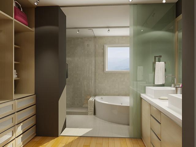 Bathroom walk in closet flickr photo sharing for Master bathroom with walk in closet