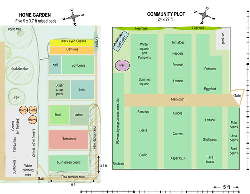 skippy 39 s vegetable garden plot plan to scale