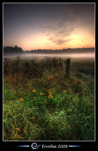 flowers red orange mist green water grass yellow fog photoshop sunrise canon fence river rebel belgium belgique tripod belgië sigma naturereserve tips het fields remote 1020mm erlend hdr mechelen cs3 broek 3xp photomatix tonemapped tonemapping xti 400d infinestyle erroba robaye erlendrobaye vosplusbellesphotos