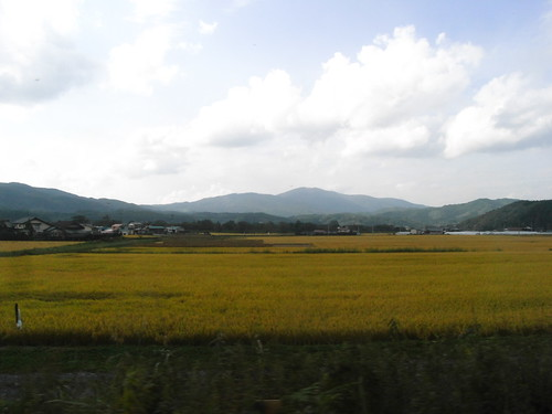 japan iwate ricoh caplior6 wy20081010
