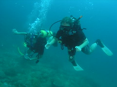 Scuba Diving And Snorkeling In Phi Phi Island