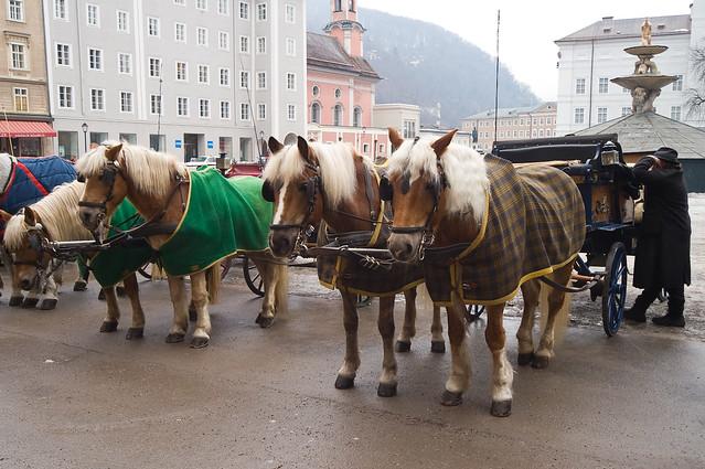 Horse carriage. Salzburg, Austria * Повозка с лошадьми. Зальцбург, Австрия