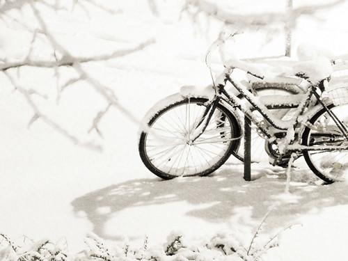 ~ snowy ~