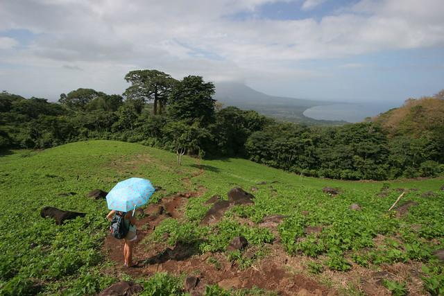 View towards Concepción