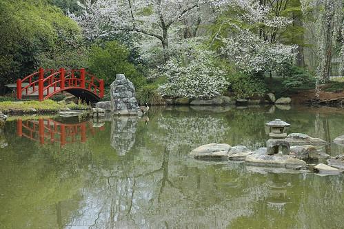 bridge lake gardens botanical japanesegarden birmingham alabama tranquility sakura lantern