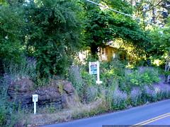 home for sale in lake oswego   DSC01399