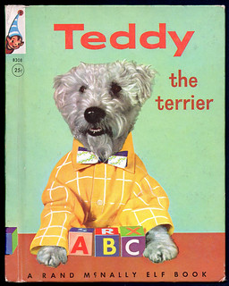 Teddy the Terrier