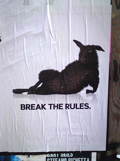 poster in the city of Amsterdam: BREAK THE RULES