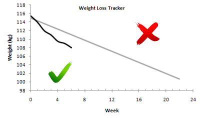 weight loss tracker week 6