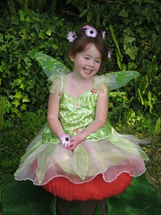 dress(0.0), toddler(0.0), child(1.0), dance dress(1.0), fairy(1.0), flower(1.0), clothing(1.0), green(1.0), fictional character(1.0), costume(1.0), person(1.0), pink(1.0),