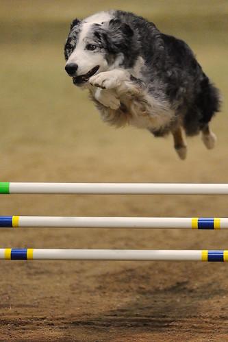 Jump!  At ISO6400