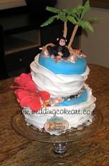 florida cakes