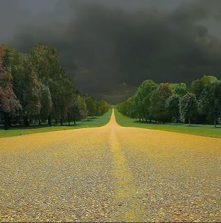 Toward the storm