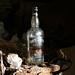 Whisky Bottle by davydubbit