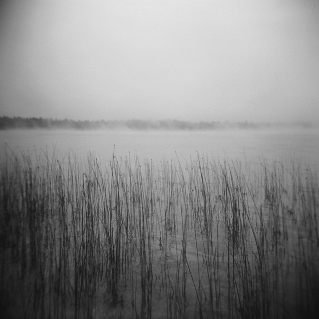 Holga: School Lake