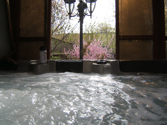 10 of the Most Unique Hot Tubs: Which One is Right For You?