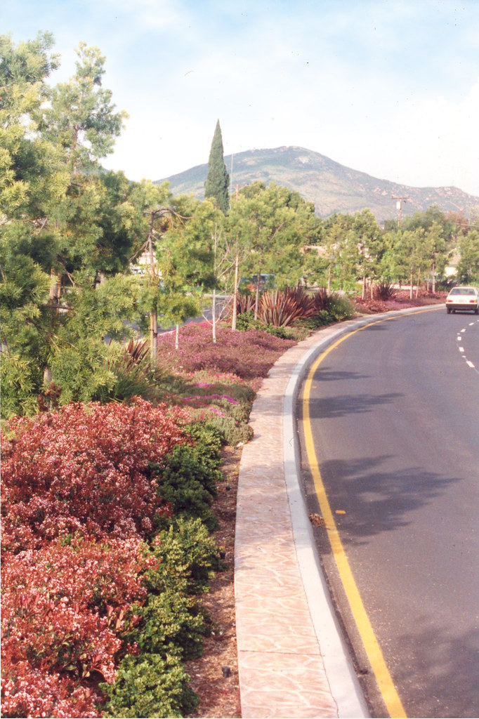 David Reed Landscape Architects » Blog Archive » Waring ...