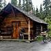 _MG_0310-trapper-cabin-denali-park