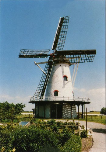 Dutch mill postcard
