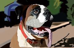 puppy(0.0), animal(1.0), dog(1.0), pet(1.0), mammal(1.0), boston terrier(1.0), boxer(1.0), illustration(1.0),