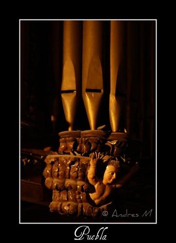 Organo (detalle)