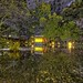 Shizuoka Pond by /\ltus