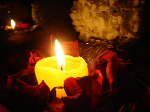 my favorite candle...and flower