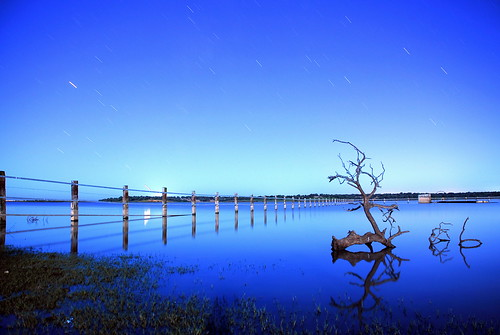 reflection azul bulb arbol lago three sevilla spain agua venus reflejo estrellas nocturna d200 hola exposición fs1 dehesadeabajo ltytr2 ltytr1 flickraward retofs1 retofs2 retofs3 retofs4 retofs7 retofs8 retofs6 retofs5 calendariofs09 uoooquéguay6retosganaosyaxdmiprimeraetiquetaderetofs6