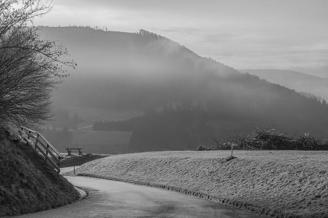Черно-белое, дорога, туман