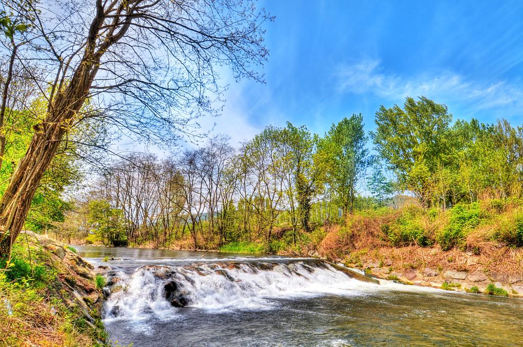 The Fecht river