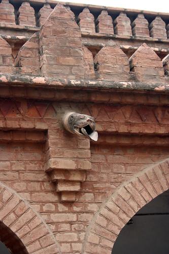 school pakistan college architecture university reptile peshawar islamic