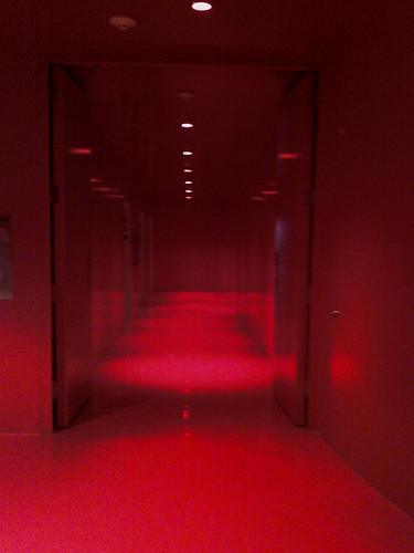 The Red Hallway